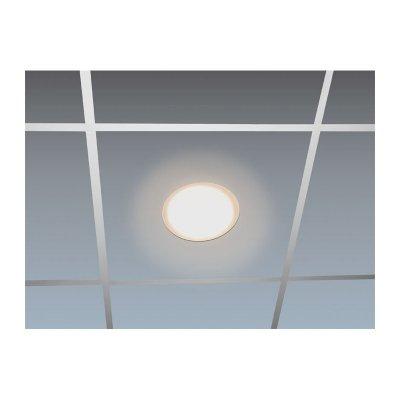 Led Panel Light 18 W Warm White O 24 Cm 72 80 Chf