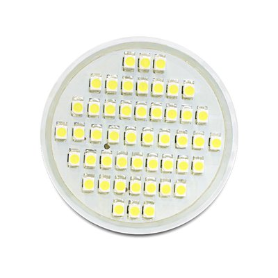 Delock Lighting MR16 LED illuminant 2.5 W cool white 48 x SMD